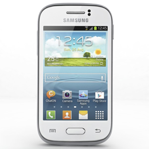 Samsung Galaxy Young S6310 Repair Service